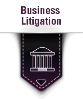Feldman Law Practice Area Icon - Business Litigation