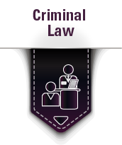Feldman Law Practice Area Icon - Criminal Law